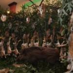 """Poveşti vânătoreşti și mare petrecere, la """"Balul Vânătorilor"""" din Alba"""