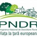 Principalele probleme în contractarea proiectelor europene au fost identificate, de către Grupurile de Acţiune Locală, la Alba Iulia