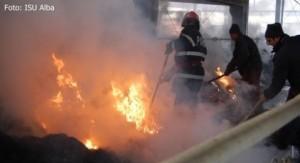 incendiu-depozit-furaje-avicola-paclisa
