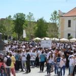 """Proiect de prevenire a consumului de droguri demarat la Şcoala Vasile Goldiş şi Liceul de Arte """"Regina Maria"""" din Alba Iulia"""