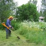 Licitaţie de peste 4,6 milioane de euro la Primăria Alba Iulia pentru amenajarea şi întreţinerea spaţiilor verzi