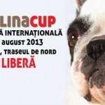 Sâmbătă și duminică, Alba Iulia va găzdui cel mai important eveniment chinologic al anului. Vezi programul