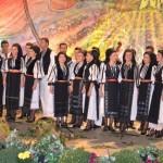 """Alexandra Băcilă a câștigat marele premiu al festivalului concurs de folclor """"Strugurele de Aur"""" 2013"""