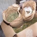 Tânăr de 27 de ani din Târgu Mureș, arestat preventiv la Alba Iulia pentru trafic de droguri