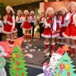 Miercuri, 18 decembrie, Alba Mall va fi gazda Concertului caritabil de colinde organizat de Consiliul Judeţean al Elevilor