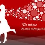 Mesaje amuzante de Valentine`s Day 2015. MESAJELE care aduc ZÂMBETUL pe buzele PERSOANEI IUBITE | albaiuliainfo.ro