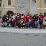 Un grup de albaiulieni a organizat astăzi un Flash-mob împotriva eutanasierii în masă a câinilor fără stăpân