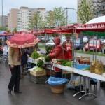 Consiliul Local Alba Iulia stabilește în ședința de mâine contravaloarea atestatului de producător