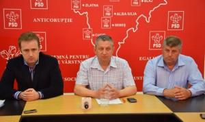 PSD-Alba-rezultate-alegeri-europarlamentare-mai-2014