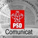 """PSD Alba: """"Criza deşeurilor este generată de incompetenţa şi dezinteresul liderilor PDL, Dumitrel şi Hava!"""""""