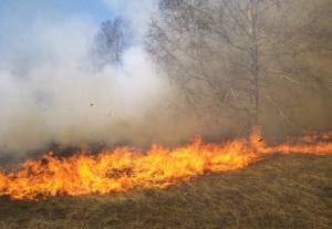 incendiu-de-vegetatie-alba-iulia