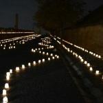 Cercetașii albaiulieni au creat o atmosferă de basm la intrarea în Cetatea Alba Carolina