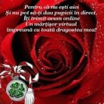 Mesaje de 1 martie 2015. Ce sms-uri, felicitări şi mesaje puteţi trimite cu ocazia venirii primăverii | albaiuliainfo.ro