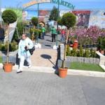 Mâine începe la Alba Iulia cea de-a VII-a ediţie a Târgului Grădinarului. Vezi programul