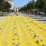 Între sediul BCR și magazinul Unirea, în centrul municipiului Alba Iulia, vor fi amenajate 94 locuri de parcare cu plată