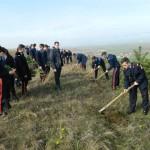 "Elevi de la Colegiul Militar ""Mihai Viteazul"" din Alba Iulia au participat la o acțiune de plantare de arbori"
