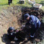 Muniție rămasă neexplodată din cel de-al Doilea Război Mondial descoperită la Teleac