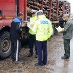 Bărbat de 61 de ani din Sântimbru surprins de polițiștii din Alba Iulia în timp ce transporta material lemnos fără acte de proveniență