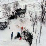 În municipiul Alba Iulia s-a dat startul toaletării de iarnă a copacilor din parcurile și de pe străzile orașului