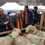 Ministrul Agriculturii, Petre Daea, primit cu entuziasm și colinde la Alba Iulia, unde și-a cumpărat produse tradiționale
