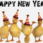 MESAJE SMS de Anul Nou 2018 haioase. Urări și Felicitări amuzante pe care le puteți transmite celor dragi | albaiuliainfo.ro