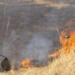 Intervenție a pompierilor militari din Alba Iulia pentru stingerea unui incendiu de vegetație uscată izbucnit pe strada Izvorului
